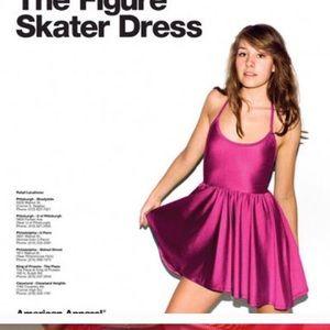 American apparel nylon skater dress